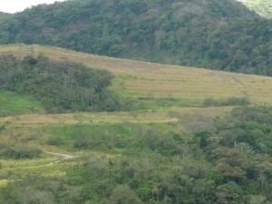 La mina Bellavista cerró sus puertas en 2007, dos meses después una de las paredes se derrumbó. CRH