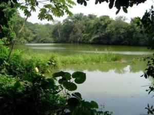 País maneja doble discurso en materia ambiental. Foto: Archivo EFE