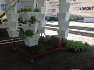 La hidroponía es la agricultora del futuro. CRH
