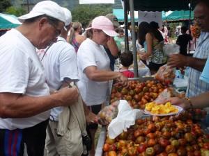 Este fin de semana y hasta el 8 de octubre la Feria del Pejibaye lo espera, en Tucurrique de Jiménez, en Cartago.