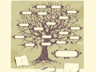 Encuentre Sus Antepasados Entre Más De 25 Millones De árboles