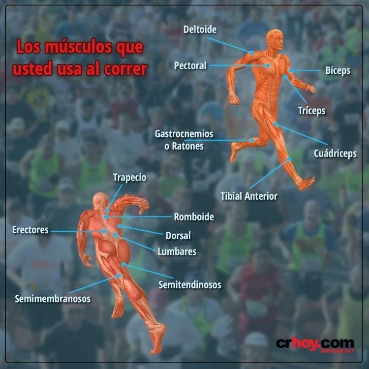 correr, el ejercicio que trabaja más de 200 músculos al mismo tiempo