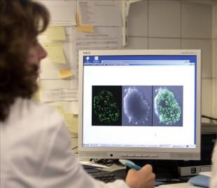 Google y Sanofi buscarán nuevas formas para almacenar y analizar en tiempo real la información sobre niveles de glucosa para poder gestionar mejor la enfermedad y evitar complicaciones a largo plazo como los ataques cardíacos y el cáncer. EFE/Archivo